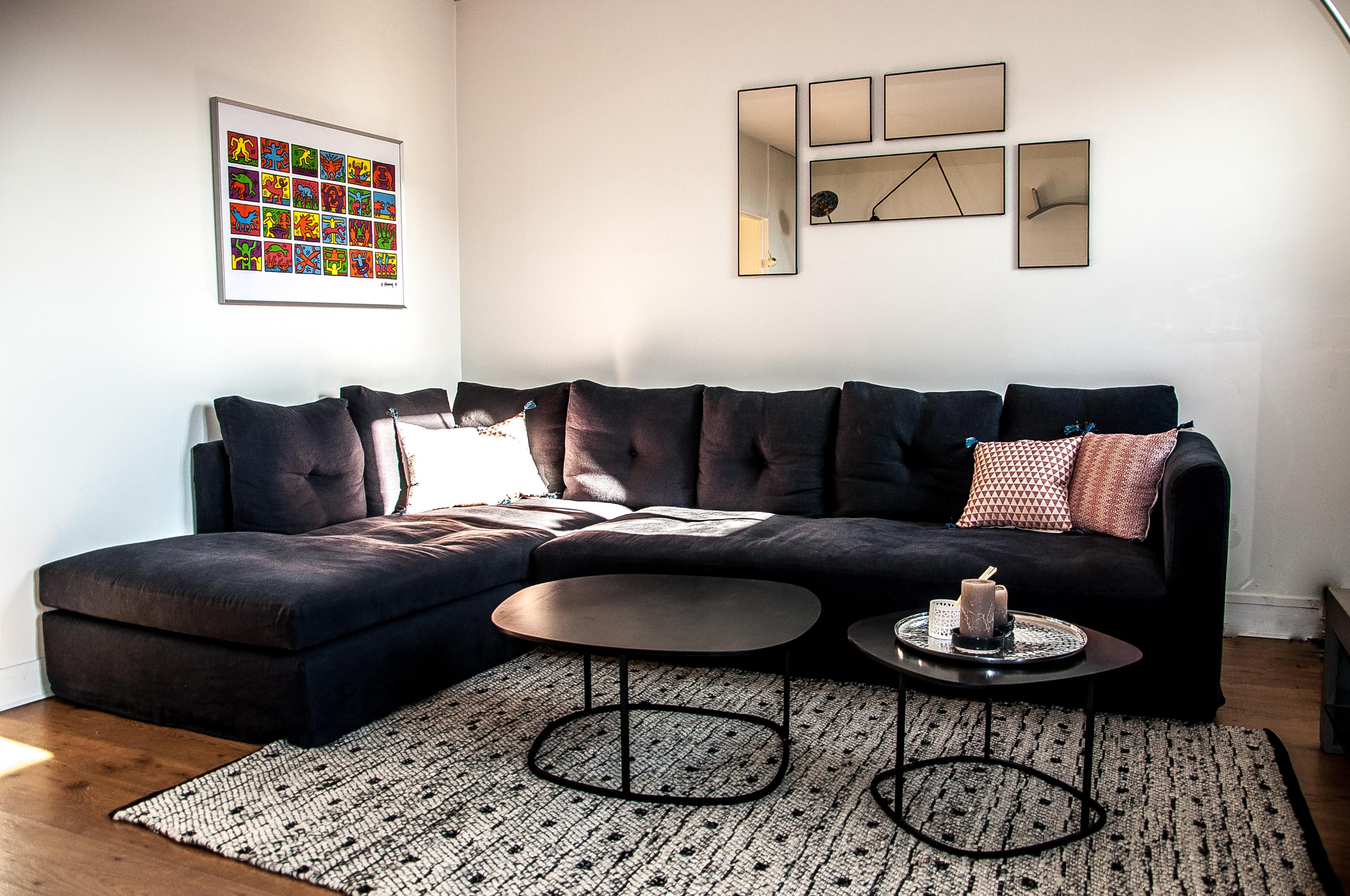 Appartement de MC - Saint-Mandé (94)
